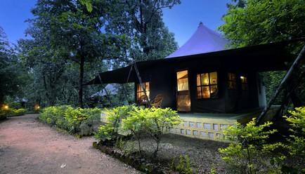 Pench Jungle Camp