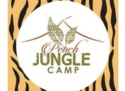 A Quintessential 'Jungle Book' Hideout at the Pench Jungle Camp