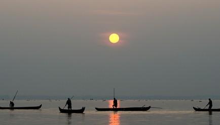 Purity at Lake Vembanad