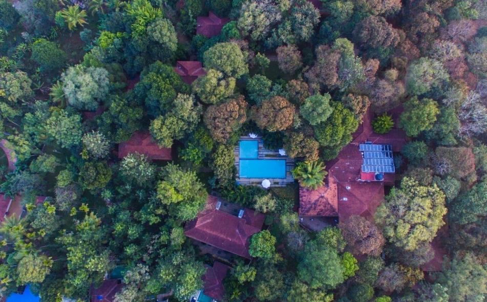 Greenwoods Resort, Thekkady