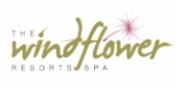 A Luxurious Jungle Retreat at Windflower Jungle Resort and Spa Bandipur