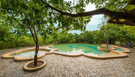Windflower Jungle Resort and Spa